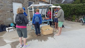 Buying fresh fish in Tresco