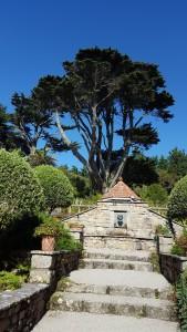 Mediterranean garden Abbey Gardens Tresco