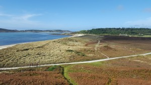 View across Tresco NGS